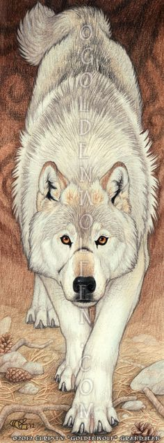 Goldenwolfen.com - The artwork of Christy Grandjean