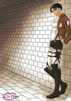 attack on titan • Levi heichou •