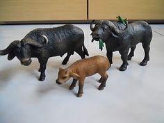 Bufalo africano (2 Schleich) (1Safari ltd)