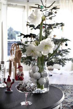 amaryllis_myrberg Winter Christmas, Glass Vase, Clip Art, Table Decorations, Advent, Flowers, Inspiration, Holidays, Home Decor