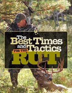 Tips for Hunting the Whitetail Deer Rut | Deer  Deer Hunting | Whitetail Deer Hunting Tips