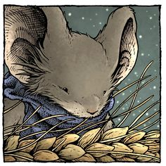 David Petersen's Blog: Mouse Guard Character Portrait