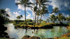 Hyatt Kauai