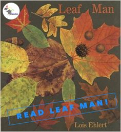 Read the lovely book 'Leaf Man' by Lois Ehlert. The pages are full of beautiful illustrations made from leaves and you will gain lots of inspiration for making art! #eyfs #earlyyears #autumn #fall #aceearlyyears #leafman