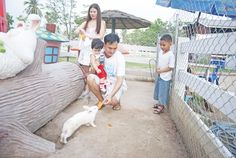 Pattaya Sheep Farm | Thailand
