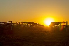 Across the nation, solar farms are poised to become a boon for rural economies that have been hard hit by the decline of industries such as agriculture, manufacturing and coal, as well as the boom-and-bust cycles of oil and gas.  In North Carolina, for instance, farmers lease fallow land to solar panel companies; in West Texas, counties like Pecos, once reliant on oil and gas extraction, are diversifying through solar and wind power.  Beyond abundant sunshine, the county's other draws are…