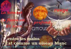 #Βénédictions, #PleineLune, #âmes, #bienaimées #amour, #lumière et #Laluneestrouge, #ManosHadjidakis Archetypal Flame Αρχέτυπη Φλόγα - Google+