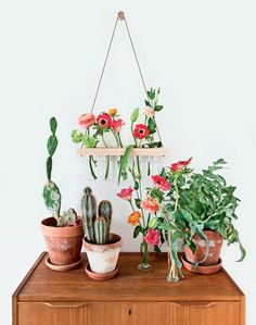 Lav de smukkeste væghængte vaser, og lad dem ændre udtryk i takt med årstidernes skiften.