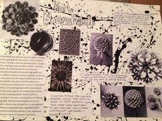 Karl Blossfeldt research page A Level Art Sketchbook, Sketchbook Layout, Sketchbook Inspiration, Sketchbook Ideas, Natural Form Artists, Natural Forms Gcse, Artist Research Page, Organic Art, Organic Shapes