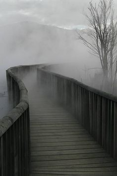 foggy misty bridge into the unknown Beautiful World, Beautiful Places, Beautiful Moon, All Nature, Nature Gif, Nature Images, Pathways, Belle Photo, Black And White Photography