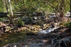 Bull Creek, Austin, Texas