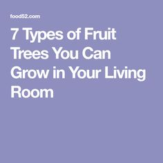 7 Types of Fruit Tre