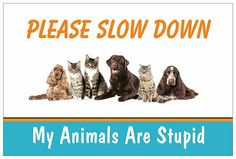 Yard Sign My Animals Are Stupid by MyCatsAreStupid on Etsy Stupid Animals, Sign I, My Animal, Yard, Prints, Etsy, Garten, Courtyards, Tuin