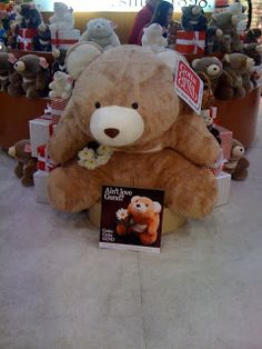 Snuffles Bear by Gund Collector's Blog: 4ft. Snuffles - largest Snuffles ever made presented at New York City Toy Fair