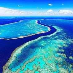 Great Barrier Reef  #amazing #travel #traveling #travelingram #skydive #skydiver #skydiving #f4f #l4l #like4like #likeforlike #follow4follow #followforfollow  #diver #diving #dive #explore #dream #usa #skydiving #jw #skydiver #skydiving #wow #greatbarrierreef #borabora by tropical.bean http://ift.tt/1UokkV2
