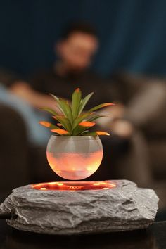 Sometimes, we wet our 'plants' 🤣 Luckily our levitating plant pot is easy to water and maintain. It also adopts electromagnetic levitation technology - making your plant pot float in midair very easily! We thought so. Floating Plants, Creative Birthday Gifts, Modern Tech, Home Goods Decor, Resin Material, Succulent Terrarium, 3d Prints, Luxury Decor, Business Gifts