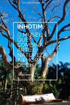 Inhotim - Minas Gerais #MuseumWeek