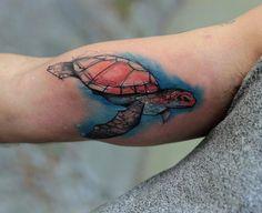 Watercolor sea turtle by Kamil Mokot