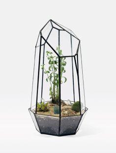 Beautiful Terrariums by Score + Solder