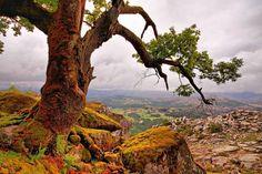 Terras de Bouro, northern Portugal