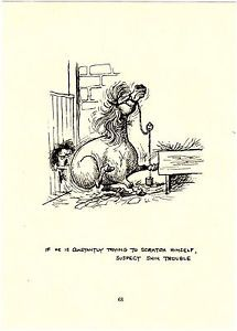 "Norman Thelwell ""Pony Scratching Himself"" Horse Cartoon Print"