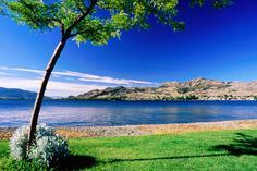 Osoyoos Lake from Pioneer Walkway. B & B, West Coast Canada, Places To Travel, Places To Visit, Discover Canada, Vancouver City, Canada Holiday, Canada Images, Canada Travel