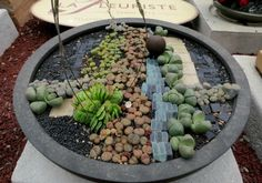 I love this one! #GardeninginMiniature