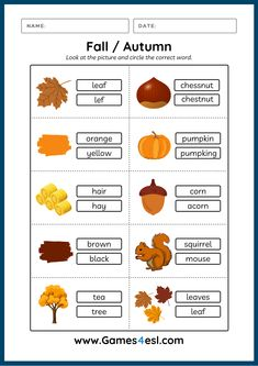 A collection of free worksheets about fall. These fall worksheets are great for kids and beginner ESL students to learn fall vocabulary In English. Download and use in class today!