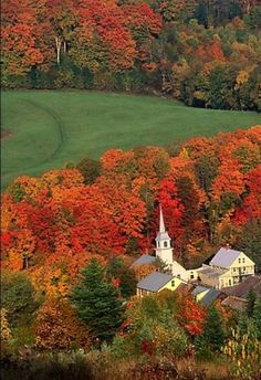 I REALLY need to go to Vermont in the fall. I've been several times in the summer, but never in the fall. Bucket list item for sure.