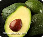 Avocado oil is a key component in the fight against free-radical aging and cancer proliferation
