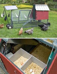 I've been dreaming about this idea...   Clucked Up: 13 Creative Chicken Coop Designs | WebEcoist