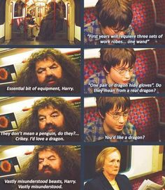 Deleted scene from the Sorcerer's Stone. I saw this on ABC Family once!