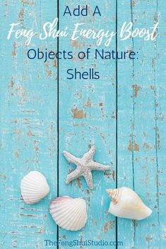 Feng Shui encourages us to bring those beach coming treasures inside to boost the energy in our homes. Use Objects of Nature to create your Feng Shui Home. #fengshuihome #beachcomber #shells #fengshui #fengshuitips #howtofengshui #fengshuienergyboost #boostenergy #fengshuidiy