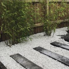 Updated garden path with railway sleepers and bamboo.