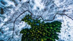 A unique view of nature captured by a drone #nature http://news.nationalgeographic.com/2016/07/pictures-drone-photography-contest-winners-dronestagram/