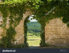 Find Old Wall Arch stock images in HD and millions of other royalty-free stock photos, illustrations and vectors in the Shutterstock collection. Thousands of new, high-quality pictures added every day. Plantas Indoor, Different Points Of View, Old Wall, Brick Wall, Arches, Birds In Flight, Backyard, Outdoor Structures, Stock Photos
