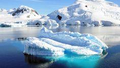 """Das Autoren-Duo Frank Bosse und Fritz Vahrenholt beschäftigen sich in ihrem aktuellen Monatsbrief mit der Meldung, dass – dank des (menschgemachten) Klimawandels – nunmehr auch die Antarktis """"ergrü…"""