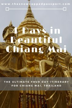 Chiang Mai - The Rose of the North. What a city! Chiang Mai is Thailand's northern capital and often referred to as the 'Rose of the North'. A laid back city that is a charming mix