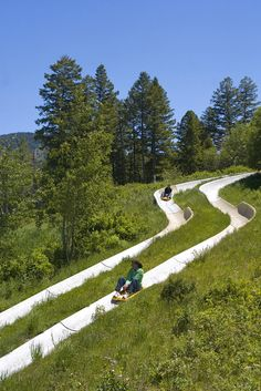 Jackson Hole's Only Alpine Slide - Snow King Ski Area & Mountain - Wyoming Vacation Places, Vacation Destinations, Dream Vacations, Vacation Spots, Places To Travel, Greece Vacation, Romantic Vacations, Romantic Travel, Vacation Trips