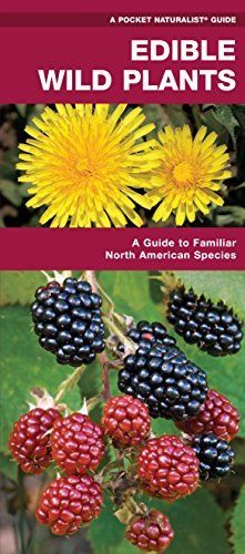 Edible Wild Plants: A Folding Pocket Guide to Familiar North American Species (Pocket Naturalist Guide Series) by Raymond Leung James Kavanagh, http://www.amazon.com/dp/B00USBMCE8/ref=cm_sw_r_pi_dp_n1Jvvb1YH6PQ0