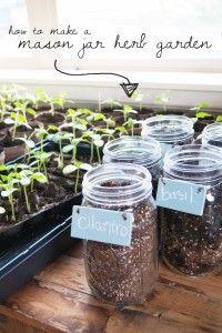 Use mason jars to create an indoor (or outdoor) herb garden