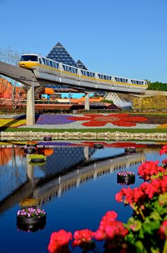 International Flower and Garden Show