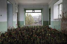 Poetic Photographs of Abandoned Homes in Iran – Fubiz Media