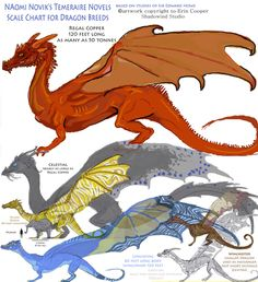 Dragon Breeds Size Refrence by Shadowind on deviantART #temeraire