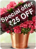 Special offer RS 25 OFF