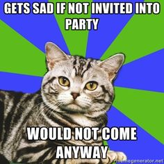 Introvert Cat: Gets sad if not invited to party. Would not come anyway...