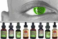 http://www.bigheadshop.com/about.htm - Herbal Smoking Alternatives BigHeadShop.com - Online Herbal Head Shop for Herbal Smoke, Herbal Incense Blends, Rolling Papers, Natural Smoking Herbs and Legal Herbal Smoking Alternatives. All herbal smoking blends offered sell are USA Legal Smoking Alternatives. https://www.facebook.com/bestfiver/posts/1431384783741159
