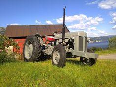 Ferguson TE-F '54 Ferguson Te20, Tractor