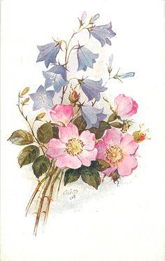 tres tallos de abajo a la izquierda, tres rosas de color rosa para perros con los centros amarillos y s evenopen campánulas violetas sobre un tallo