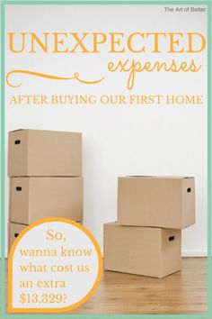 Unexpected Expenses After Buying Our First Home - The Art of Better (2)